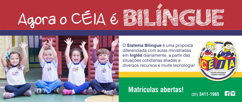 Banner-Site-CEIA-bilingue-1